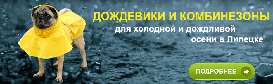 Комбинезоны/дождевики