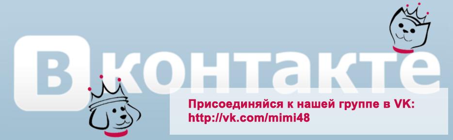 Присоединяйся к нашей группе в ВКонтакте